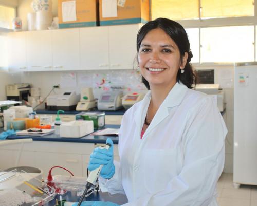 """Universidad de Antofagasta realizará nueva versión de la Fiesta de la Ciencia"""""""